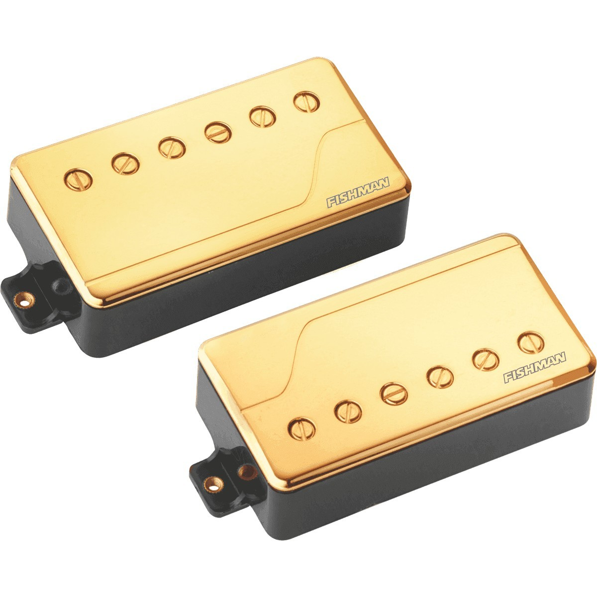 Micros Guitares Electriques