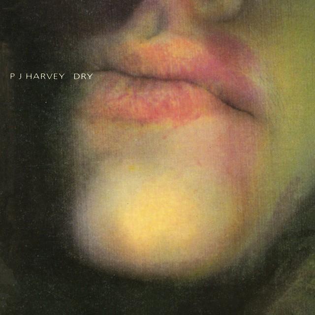 PJ HARVEY Dry