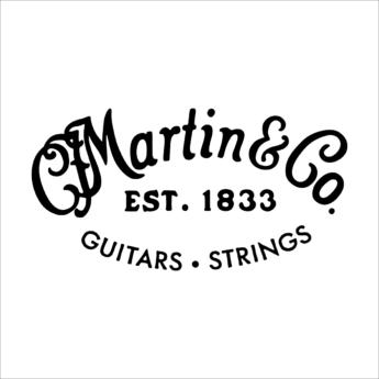 MARTIN Cordes Acoustiques Detail