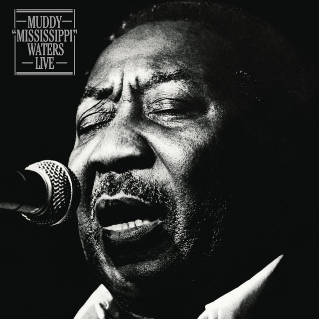 MUDDY WATERS Muddy Mississippi Waters Live